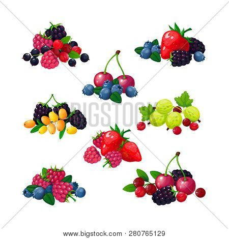 Fresh Summer Berries. Piles Of Raspberry Currant Strawberry Gooseberry Blackberry Cranberry Blueberr