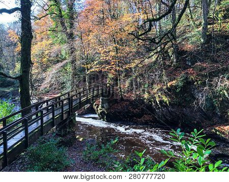 This Is A Bridge That Goes Over A Stream.  It Is Part Of A Forest Path In Ness Woods, Northern Irela