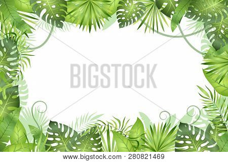 Jungle Background. Tropical Leaves Frame. Rainforest Foliage Plants, Green Grass Trees. Paradise Afr
