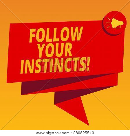 Handwriting text Follow Your Instincts. Concept meaning listen to your intuition and listen to your heart Folded 3D Ribbon Sash Megaphone Speech Bubble photo for Celebration. poster
