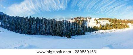 Panorama Of A Beautiful Winter Landscape. Spruce Forest On A Snow Covered Hills. Part Of Trees In Th