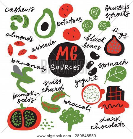Magnesium Sources. Funny Hand Drawn Illustration Of Foods Rich In Magnesium Vector.