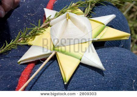 Palma'S Star
