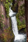 The North Umpqua River flowing over three tiers of columnar basalt rockto create Toketee Falls in Oregon. poster