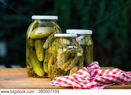 pickled cucumbers for winter organic food