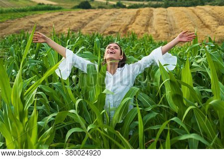 Cheerful Woman Posing In The Corn Crop, Agriculture And Cultivation Concept. American Woman In A Whi