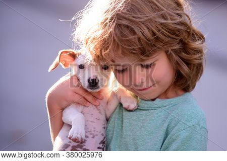 Happy Child And Dog Hugs Her With Tenderness Smiling. Little Boy Hugging Puppies. Close Up, Copy Spa