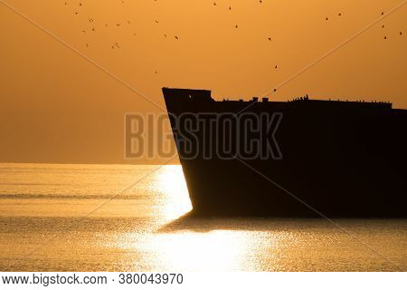 Beautiful Landscape By The Sea, At Sunrise. Seabirds Flying Over A Shipwreck. Silhouettes