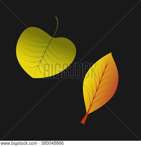 Vector Color Illustration. Autumn Leaves. Abstract Vector Illustration Banner. Light Banner. Golden