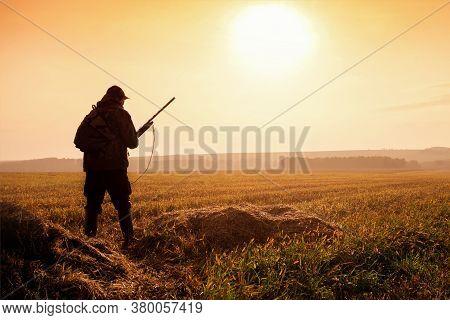 Hunter In Sunrise With Shotgun. Autumn Hunting Season.