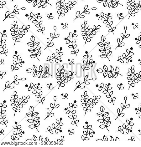 Black And White Seamless Pattern With Outline Leafy Twigs, Wild Herbs And Berries.