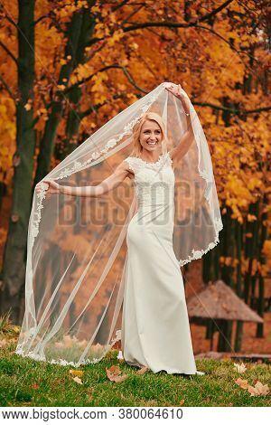 A Beautiful Portrait Of The Bride Under A Veil. Elegant Woman With Professional Make Up And Hair Sty