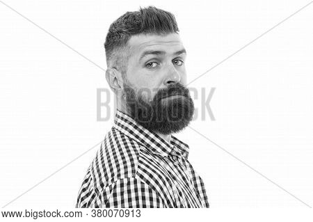 Trust Your Barber. Facial Hair. Hipster With Long Beard And Stylish Hair On White Background. Brutal