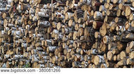 Pile Stacked Natural Sawn Wooden Logs Background - Deforestation.