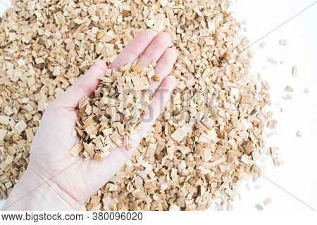 Chips From An Alder For Smoking Products In A Hand. Background Of Alder Chips.
