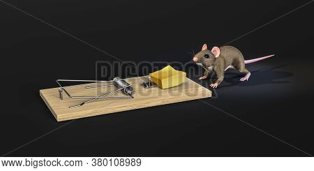 The Mouse Goes To The Cheese Placed On A Mousetrap - Isolated On Gray Gradient Background - 3d Illus
