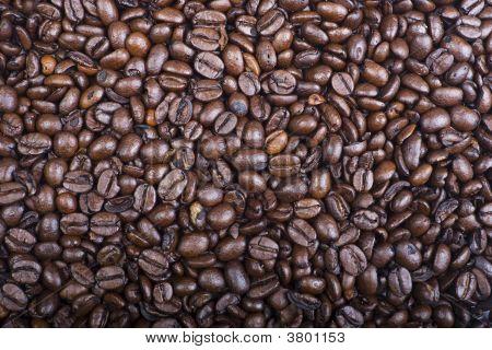 Coffee Bean Backgroun