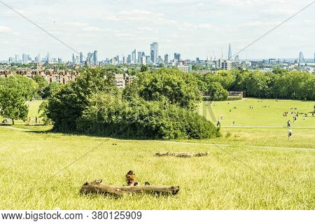 June 2020. London. The View From Primrose Hill And Cityscape London, England, Uk, Europe