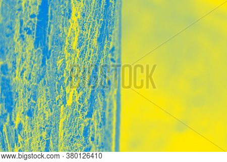 Vivid Blue Yellow Background. Half Yellow, Half Patchy Blue. Copy Space
