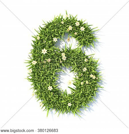 Grass Font Number 6 Six 3d Rendering Illustration Isolated On White Background