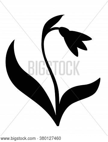 Snowdrop With Two Leaves - Black Vector Silhouette For Pictogram Or Logo. Snowdrop - Sign Or Icon. G