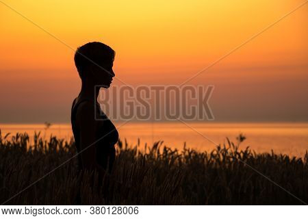 Silhouette Portrait Of A Woman Standing In The Grass, In Profile, Headshot, In The Rays Of The Setti