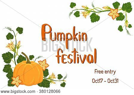 Pumpkin Festival Poster. Nice Pumpkin Plant With Flowers And Lettering For Your Design. Vector Invit