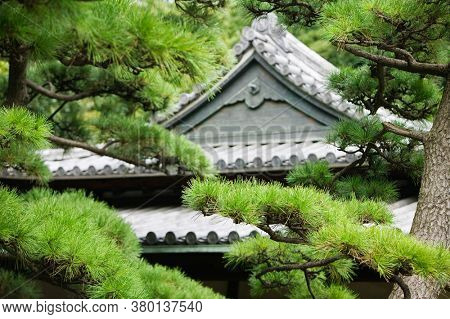 Traditional japanese house in bamboo forest