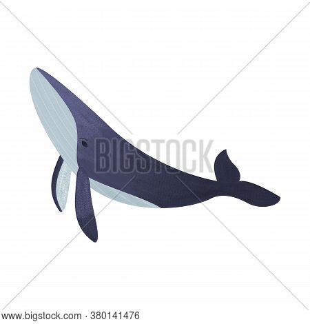 Humpback Whale With Gradient And Noise. Cartoon Mammal Blue Whale With Grain Isolated On White Backg