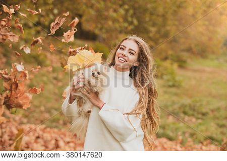 Autumn Beauty. Woman With Doggy On Fall Maple Leaf Outdoors. Happiness Carefree With Pets. Emotional