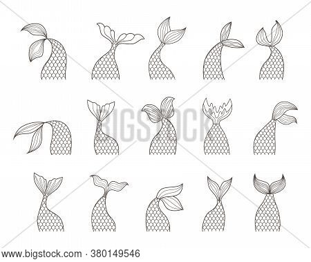 Mermaid Tail Set. Fabulous Sea Girl With Scales And Fins Instead Legs Various Types Graceful Tails A