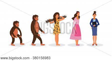 Female Evolution From Ape To Business Woman - Cartoon Women In Darwin Chain