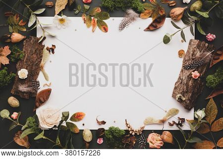 Autumnal-winter concept with dried flowers and leaves, branches of eucalyptus, bark of trees and  berries on dark background. Frame of plants. Flat lay, copy space.