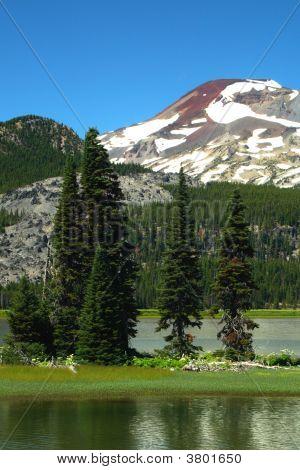 Oregon Portraits