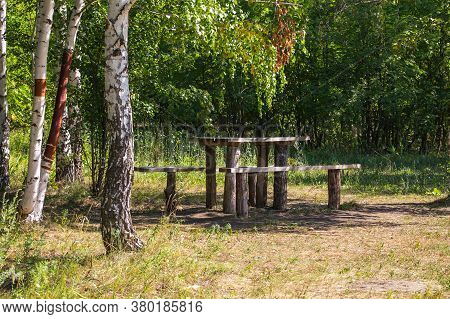 Place Of Rest Of People Tourists In The Forest, Halt, Table And Bench In The Summer Sunny Green Birc