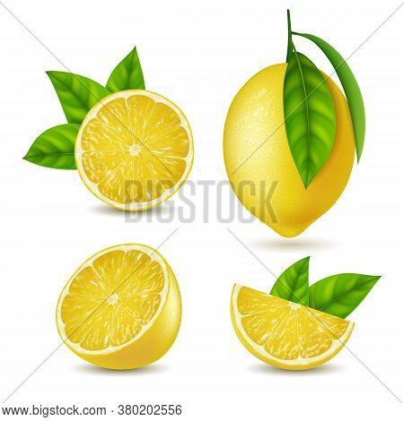 Realistic Detailed 3d Yellow Lemon Whole And Slices Set For Summer Srink. Vector Illustration Of Ing