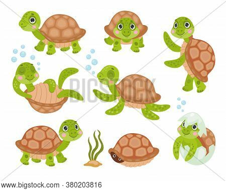 Green Baby Turtle Set. Cute Funny Tortoise Cartoon Character Sleeping, Dancing, Swimming, Hiding In