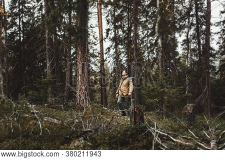 A Man Makes His Way Through Thickets In The Deep Taiga Forest