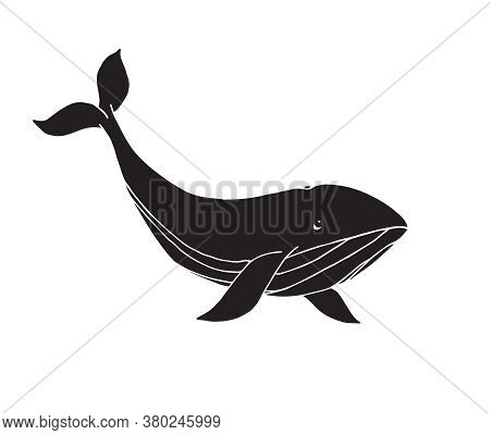 Vector Black Hand Drawn Doodle Sketch Whale Isolated On White Background