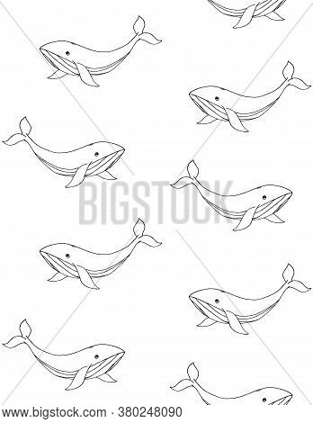 Vector Seamless Pattern Of Hand Drawn Doodle Sketch Whale Isolated On White Background