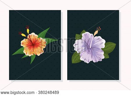 Purple And Orange Hawaiian Flowers With Leaves Painting Design, Natural Floral Nature Plant Ornament