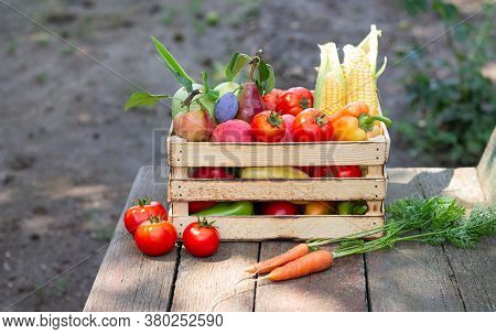 Organic Farm Concept. Fresh Fruit And Vegetables In Crate On Rustic Wooden Background Outdoors
