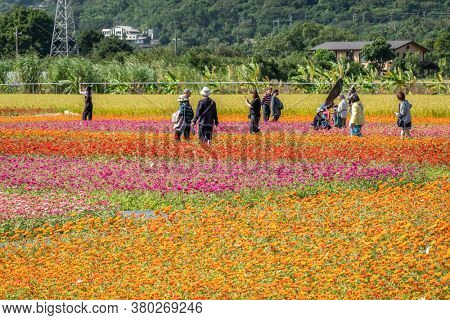 Daxi, Taiwan - November 15th, 2019: tourists walk at the garden in Daxi event of Taoyuan Flower Festival in Taoyuan, Taiwan, Asia