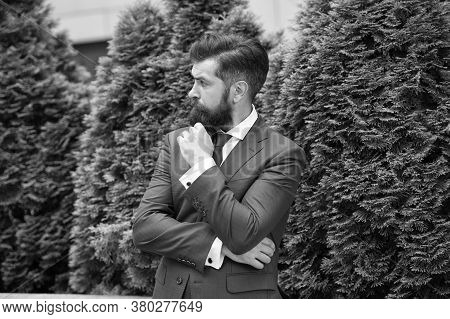 Menswear Clothes. Energy Efficiency Concept. Bearded Man In Jacket Near Cypress Tree. Handsome Man S