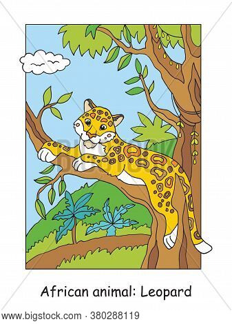 Vector Coloring Pages With Cute Leopard In African Area. Cartoon Isolated Colorful Illustration. Sto