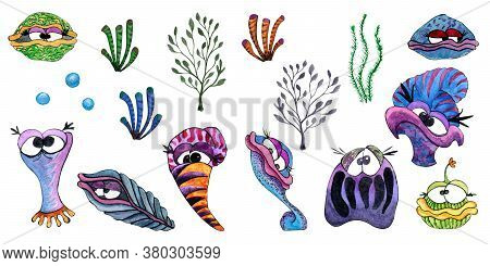 Watercolor hand painted undersea shellfish and seaweed set on white background