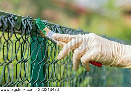 Painting The Fence With Green Oil Paint With A Brush.