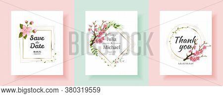 Set Of Sakura Flowers Backgrounds. Floral Wedding Invitation Cards Template Design. Holiday Invitati