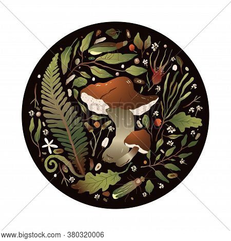 Round Forest Vector Nature Greeting Card With Boletus Mushroom, Fern And Forest Herbs.  Beautiful Na