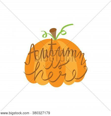 Autumn Is Here Pumpkin Vector Illustration. Hand Drawn Fall Pumpkin Vegetable And Autumn Quote, Hand